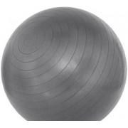 Minge fitness Avento ABS 21741, 75 cm (Argintiu)