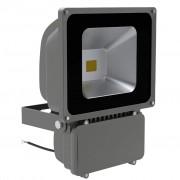 vidaXL 1 x Reflektor 80 W