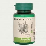 Boswellia comprimate Dacia Plant