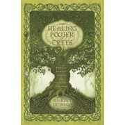 The Healing Power of Trees: Spiritual Journeys Through the Celtic Tree Calendar, Paperback/Sharlyn Hidalgo