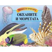 Океаните и моретата