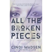 All the Broken Pieces, Paperback/Cindi Madsen