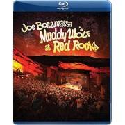 PID Joe Bonamassa - Wolf boueux à l'importation USA Red Rocks [BLU-RAY]