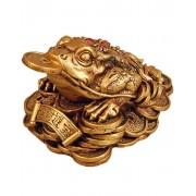 Guldfärgad Pengagroda Figur 9 cm