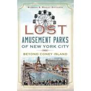 Lost Amusement Parks of New York City: Beyond Coney Island, Hardcover/Barbara Gottlock