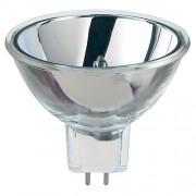 EXX 120V 250W Lamp