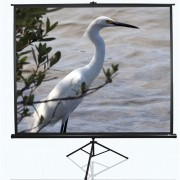 "SCREEN, Elite Screens T113UWS1, Tripod, 113"" (1:1), 203.2 x 203.2 cm, Black (T113UWS1)"