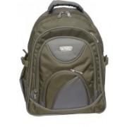 Rajshree 14 inch Laptop Backpack(Green)