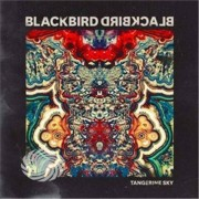 Video Delta Blackbird Blackbird - Tangerine Sky - CD