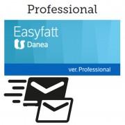 Danea Easyfatt Professional 2019 Software Gestionale