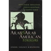 Arab & Arab American Feminisms: Gender, Violence, and Belonging, Paperback/Rabab Abdulhadi