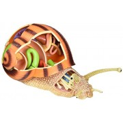Tedco 4D Vision Snail Anatomy Model