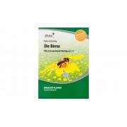Betzold Lernwerkstatt: Die Biene