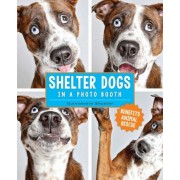 Shelter Dogs in a Photo Booth, Hardcover
