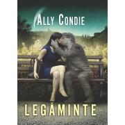 Legaminte, Vol. 1
