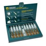 IFC Endocare Tensage Ampollas, 10 x 2 ml. -