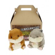 Bundle of 2 Aurora Plush Chipmunk and Squirrel with Carrier - Romper & Nanigans