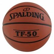 NBA TF-50 7