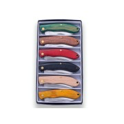 Set 6 bricege Joker curbate - culori variate - lama 6.2 cm