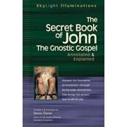 The Secret Book of John: The Gnostic Gospels--Annotated & Explained, Paperback/Stevan Davies