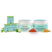 Sattvik Organics Acne Detox Kit For Oil Free Spotless Skin Leaves Skin Visibly Smoother Spotless