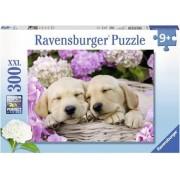 Ravensburger Puzzel Schattige Hondjes (300)