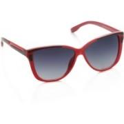 Farenheit Over-sized Sunglasses(Blue)