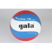 Volejbalový míč Gala Pro Line 5121S