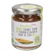 Zahar din nectar de flori de cocos bio 150g