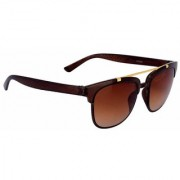 Silver Kartz Golden Crown Wayfarer Rectangular Sunglasses (Brown)