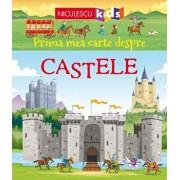 Prima mea carte despre CASTELE/Dr. Abigail Wheatley