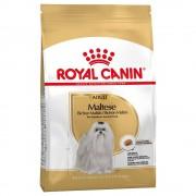 Royal Canin Breed 1,5kg Maltese Adult Royal Canin Breed Hundfoder
