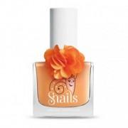 Lac Snails Fleur Daisy+Creion Decorativ si Sticker