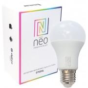 Immax Neo 07004L žárovka 1x8,5W E27 RGB