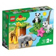 LEGO DUPLO, Pui de animale 10904