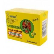 Coenzima Q10 in ulei de catina forte 30 mg , 40 capsule