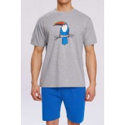 Atlantic Toucan Pyjama Set Short Sleeved T Shirt & Shorts Loungewear Grey NMP-317