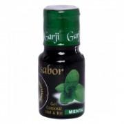 + Sabor Hot Gel Comestível 15Ml Garji (Menta)