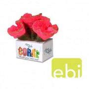 EBI AQUA DELLA CORAL MODULE M open brain coral 11x9x8cm
