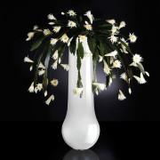 Aranjament floral DUBAI, alb 205cm