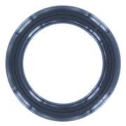 Acryl Smooth Segment Ring Zwart 4 MM