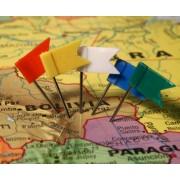 Markeervlaggetjes voor Wereldkaart diverse kleuren   Alco