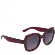 Polaroid Over-sized Sunglasses(Blue)