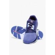 Puma Pulse Flex Xt Wn S Bleached Denim-Astral Running Shoes For Women(Navy)