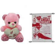 Teddy bear soft toy I love you and sweet heart Expressing sweet t heart