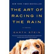 The Art of Racing in the Rain, Paperback/Garth Stein