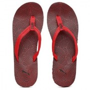 Puma Men Red Epic Flip v2 Graphic Printed Flip-Flops