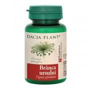 Branca Ursului Dacia Plant 60cpr