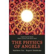 The Physics of Angels: Exploring the Realm Where Science and Spirit Meet, Paperback