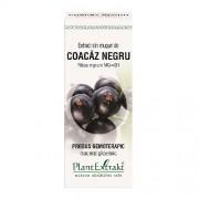 Extract din muguri de Coacaz negru